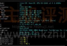 Megalayer香港显卡服务器的CPU参数和I/O读写测试